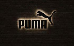 Puma удивила мир кроссовками со встроенным компьютером