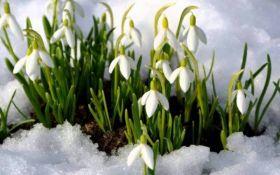 Нужно еще потерпеть: названы сроки начала весеннего потепления в Украине