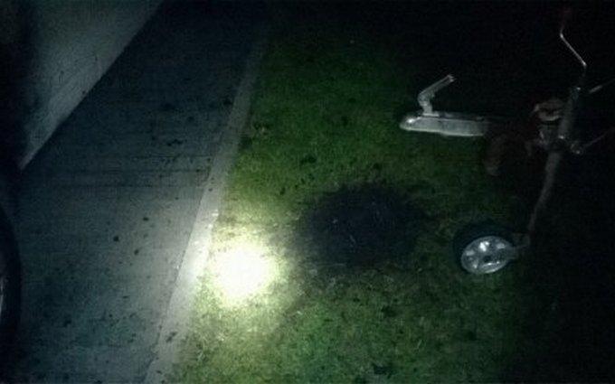 У двір до екс-регіонала у Львові прилетіла граната: з'явилися фото