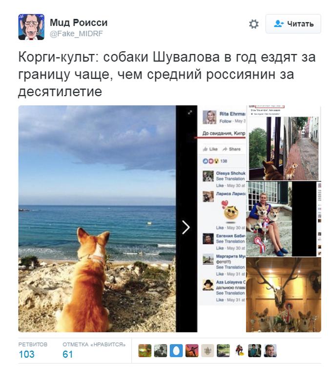 Соцмережі киплять через собачий скандал з дружиною міністра Путіна (4)
