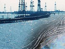 """В США создали """"нанополотенце"""", которое поможет очистить моря от нефти"""
