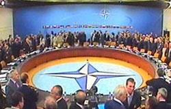 Совет НАТО едет в Украину