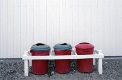 Выносить мусор опасно для здоровья