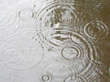 Завтра в Украине пройдут дожди