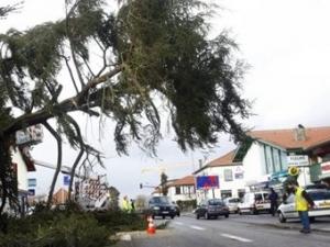 В результате урагана в Европе погибли не менее 24 человек