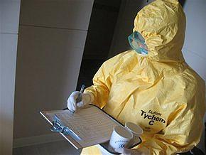 ВОЗ подтвердила более 12,5 тысяч случаев свиного гриппа