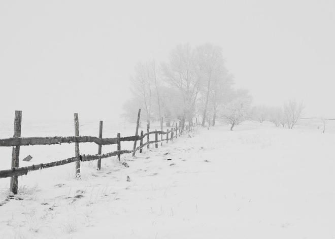 Холода в Польше унесли жизни 20 человек