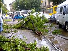 Тимошенко обещает, что Кабмин 25 июня выделит средства областям, пострадавшим от стихии