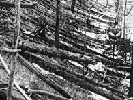 Тунгусская катастрофа - столетие загадки