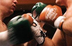 3 украинских боксера борются за право поехать на Олимпиаду