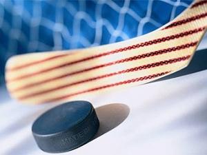 Шведский хоккеист получил тюремный срок за драку на льду