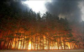 Рятувальники попереджають про високу пожежонебезпеку в п'ятьох областях України до 6 жовтня