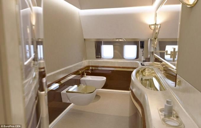 Чудо кремлевских капризов: в сети появились фото роскошного самолета Путина (1)