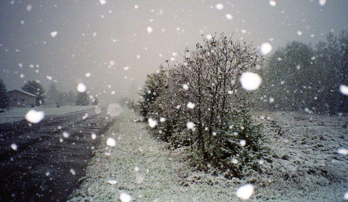 Погода на завтра, 11 января