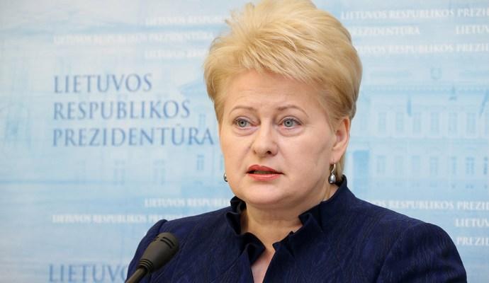 Президент Литвы считает, что Европе грозит «горячая, а не холодная война»