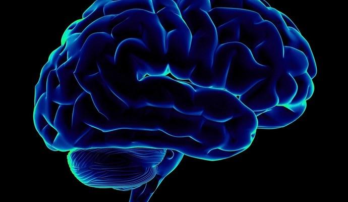 Человеческий мозг работает абсолютно по-разному в каждое время года