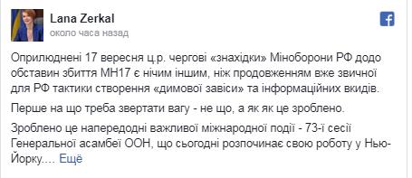 """Катастрофа МН17: названы причины дерзких заявлений России по сбитому """"Боингу"""" на Донбассе (1)"""