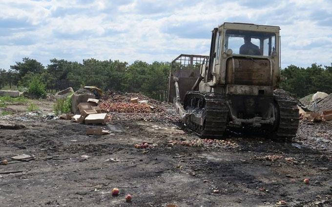 Окупанти в Криму розчавили тракторами тонни іноземних фруктів: з'явилися фото