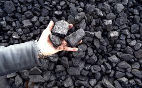 В Украину прибыло первое в 2017 году судно с углем из ЮАР - Насалик
