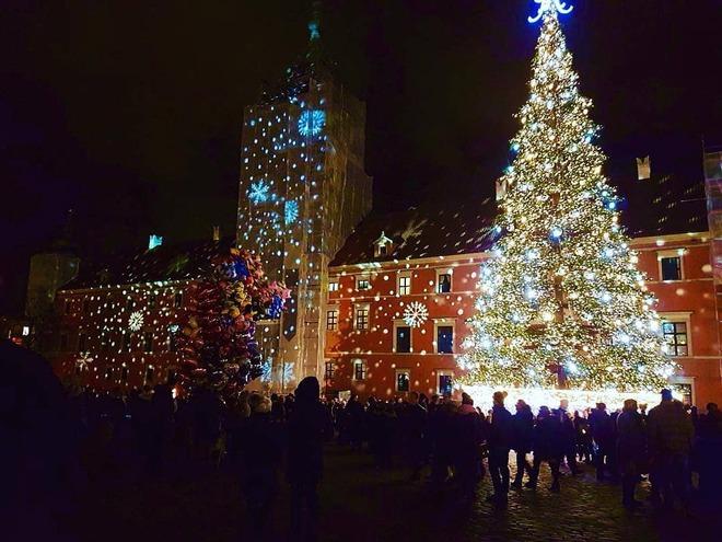 Самые оригинальные и необычные новогодние елки в мире: впечатляющие фото и видео (5)
