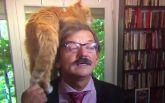 Кіт ледь не зірвав серйозне інтерв'ю і став зіркою мережі: опубліковано курйозне відео