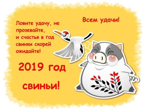 Новый год 2019: красивые поздравления в стихах и прозе, прикольные СМС (9)