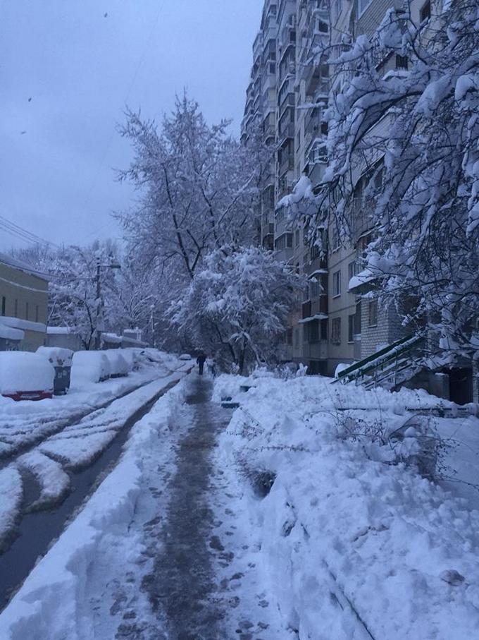 В Киеве из-за снега произошел транспортный коллапс (2)