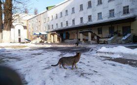 Кривавий інцидент в київському СІЗО: стали відомі нові деталі