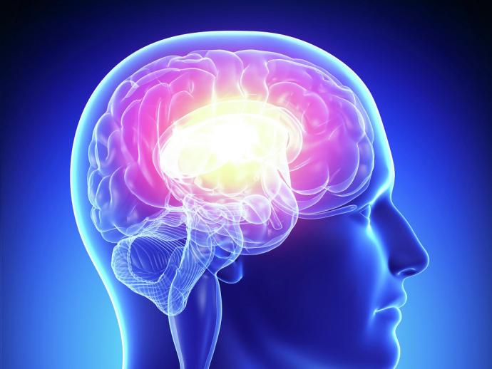 Ученые создали диету, которая способна замедлить старение мозга
