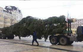 В Киев уже привезли главную елку страны: появились фото и видео