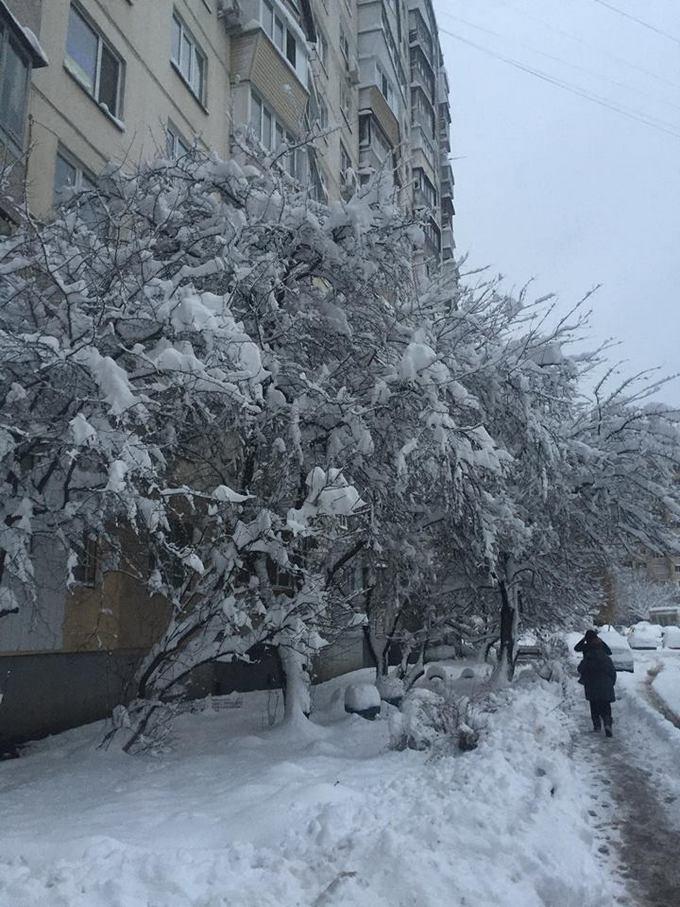 В Киеве из-за снега произошел транспортный коллапс (1)