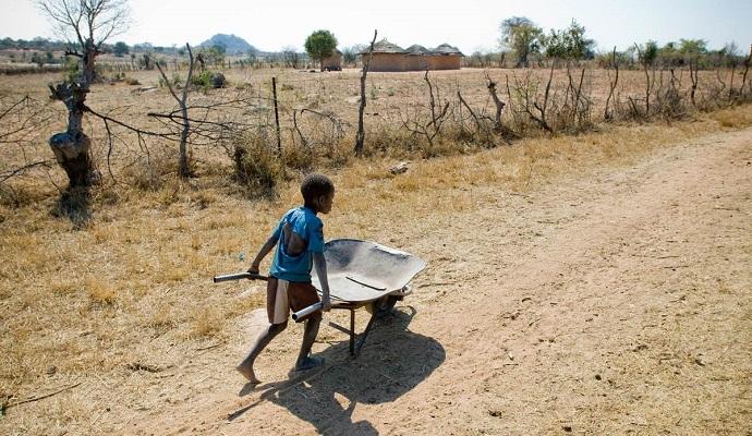 Зимбабве нуждается в $1,5 млрд на продовольственную помощь