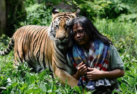Неймовірна історія дружби тигра і людини (13 фото) (10)