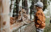 Фінське диво: як допомогти дітям полюбити школу