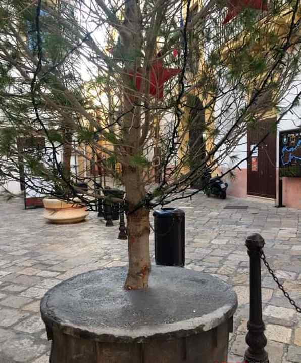 """""""Облисіла"""" головна ялинка Риму стала об'єктом насмішок в мережі: опубліковані фото (1)"""