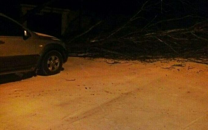 На Донбассе выпал снег необычного цвета: соцсети теряются в версиях