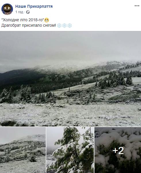 Let It Snow: Карпаты засыпало снегом - опубликованы впечатляющие фото (1)