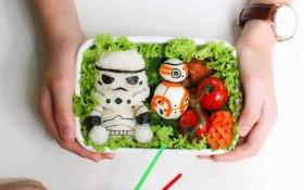 Опубліковані фото креативних обідів в школу