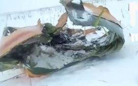 З'явилися дані про причини катастрофи Ан-148 в Підмосков'ї