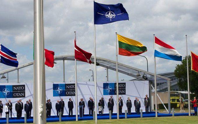 Спор в кругу семьи: Польша призвала НАТО вмешаться в скандал между Венгрией и Украиной