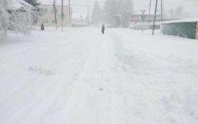 Одесскую область накрыла снежная стихия: появились фото и видео