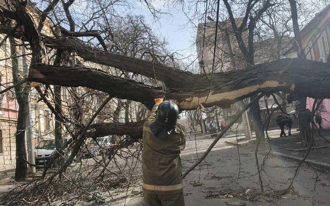 Ураган вбив жінку в Одесі - шокуючі подробиці