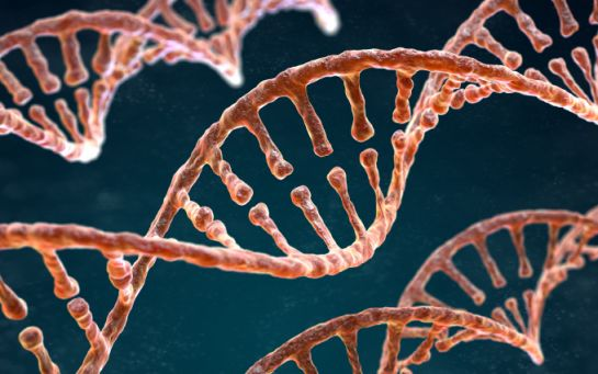Розвивається дуже швидко - відомий хірург вразив заявою про можливості генної науки