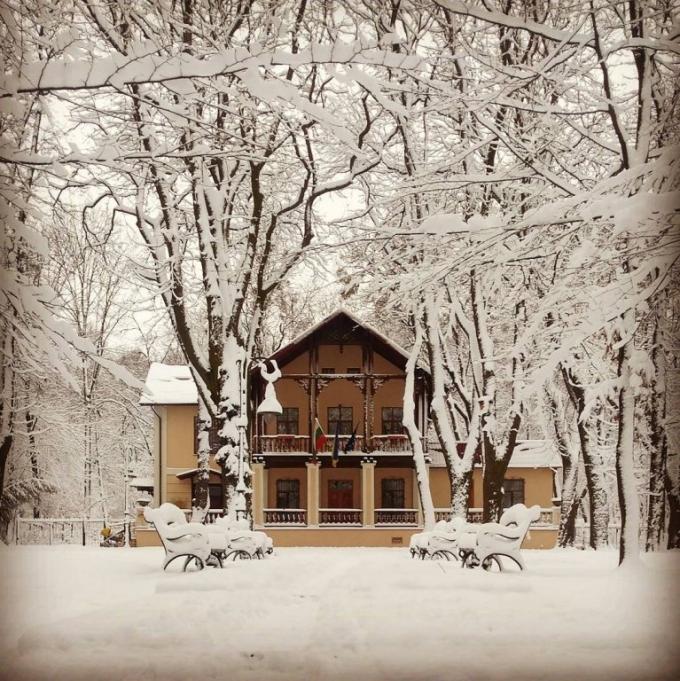 Львов засыпало снегом: в сети публикуют зрелищные фото (2)