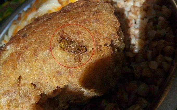 Радник Порошенка показав тарганів у солдатській їжі: опубліковані фото