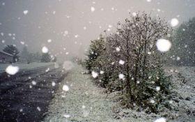 Дожди и снег: стало известно об ухудшении погоды в Украине