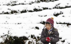 Аномальные холода убили десятки человек на Тайване