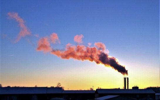 Именно это убивает экологию: эксперт бьет тревогу из-за новой масштабной проблемы