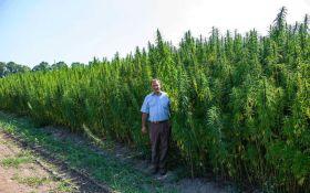 Мэр украинского города анонсировал открытие центра терапии марихуаной: соцсети взволнованы