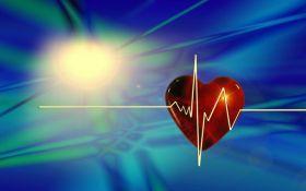Не только для мозга - назван самый полезный для сердца продукт